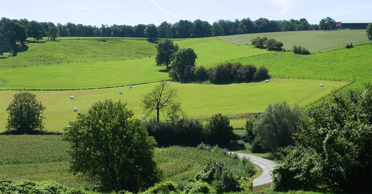 Motorroutes in Limburg