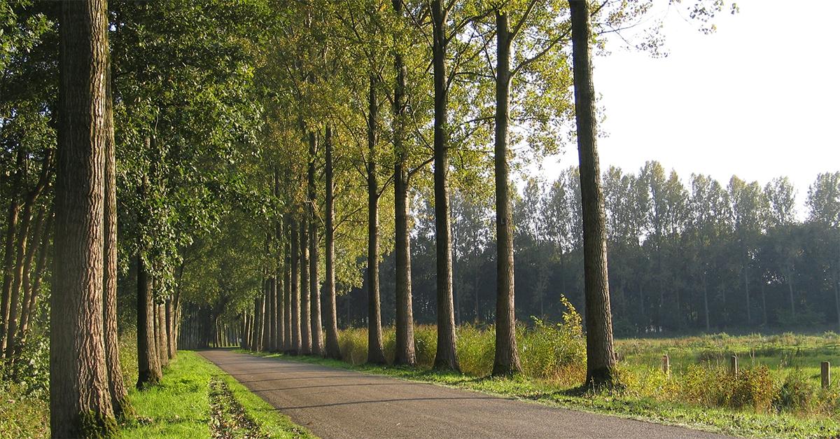 Motorroutes in Noord-Brabant